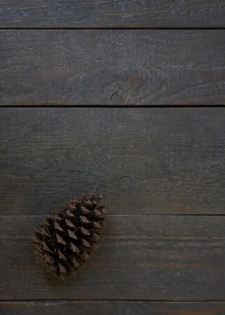 Brown weathered textured planks of wood with a fir cone, backdrop and copy space