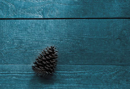 Bluegreen bright background of wooden textured boards with a fir cone