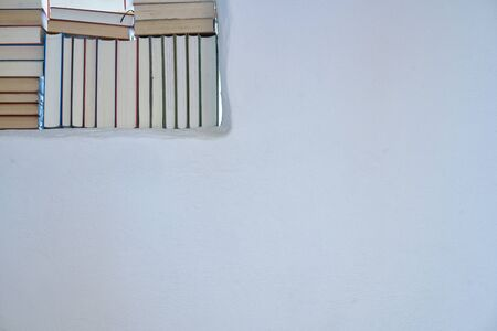 Bright sunny detail of an assortment of books in a white shelf in a room with white textured wall with copy space, back of books