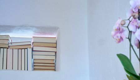 Sunny and friendly detail of stack of books in a space in a textured white wall of a room, beautiful orchid in the foreground