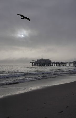 Particularly beautiful shadowy mood at the pier of Santa Monica, sun shining through the cloudy sky and seabird flying over, a shadow on the sand at the beach, the spray of pacific is foaming