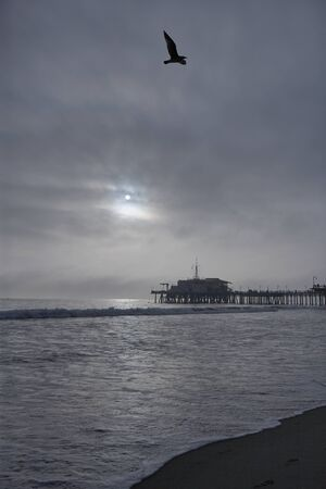 Beautiful sunset next to the pier of Santa Monica, seabird flying over through cloudy sky, the sea is calm Stok Fotoğraf