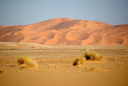 reg: Sand dunes, Libya