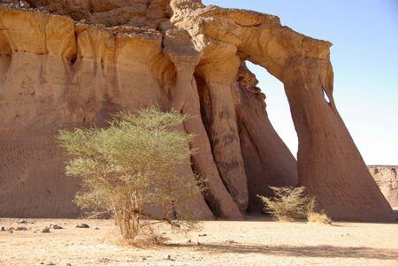 libysch: Arch in libyschen W�ste