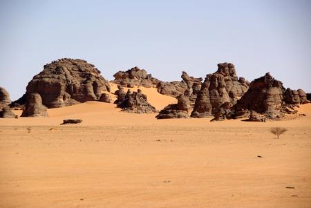 libyan: Libyan desert