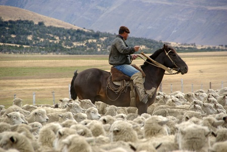 patagonia: Rider in Chile