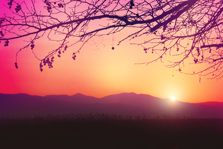 A romantic and dreamy sunrise on a cold winters day