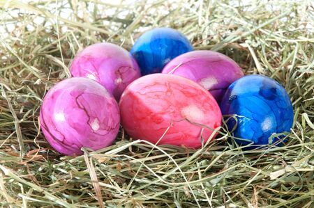 osterfest: decoration at Easter and brightly colored ei