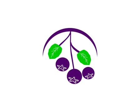 Aronia berry logo template Illustration