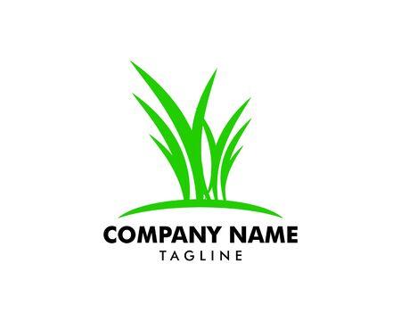 Green Grass vector Logo Template Banque d'images - 124858428