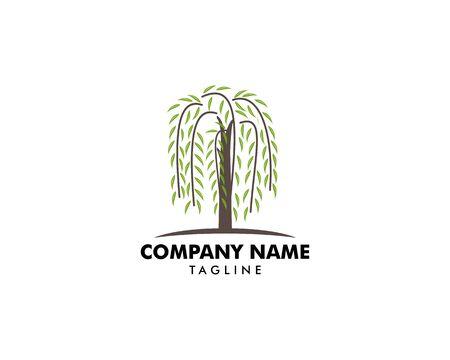 Vecteur de logo de symbole d'arbre de saule