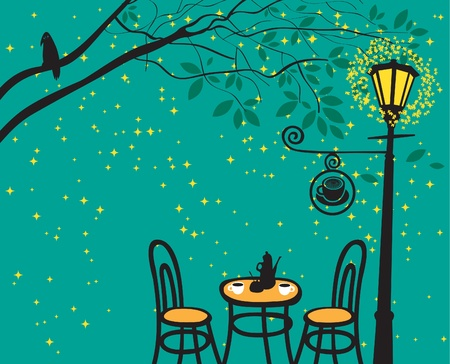 crow: night landscape with night cafe in the streetlight  Illustration