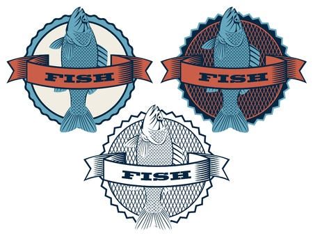 Three round banner with fish  Vector
