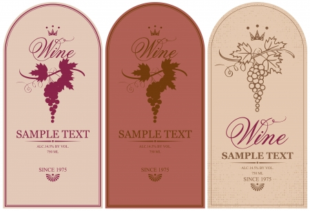 wine vineyards: vector labels for wine grapes  Illustration