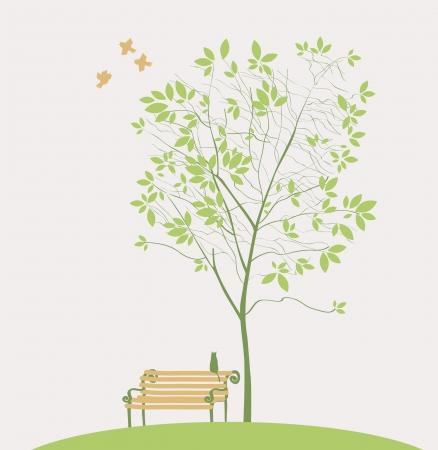 banc de parc: Spring tree with bird banc et chat