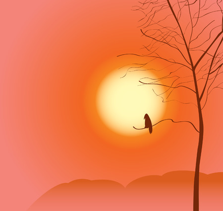 sunset sky: vector landscape with tree and a raven on sunset sky background