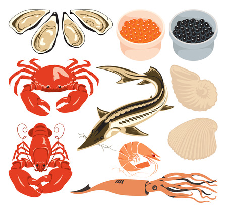 sturgeon: set of various marine animals and fish for seafood Illustration