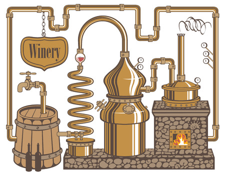 winery plant for the production of wine