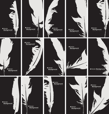 prose: vector set of black and white business cards with a bird feather