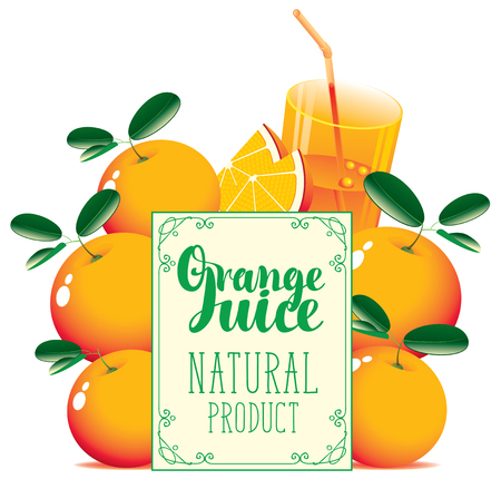 Vector banner for fresh juice with oranges, glass of juice, orange slice and signboard with inscription Orange juice