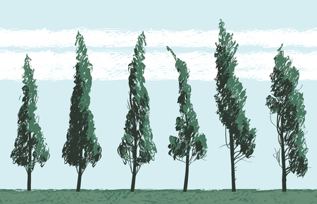 Vector landscape with trees in a field on blue sky background. Seamless pattern of trees with leaves. Drawing pencil sketches of trees Illustration