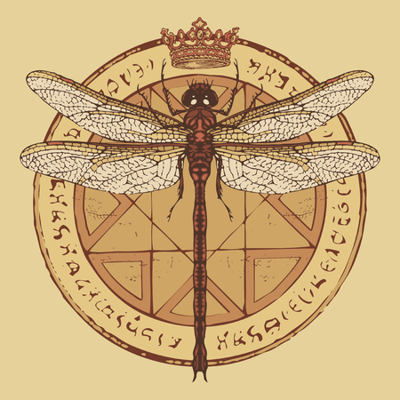 Illustration of a dragonfly and crown on a circle with an octagonal star, magical inscriptions and symbols. Vector banner in retro style