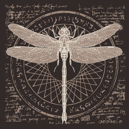 illustration of a dragonfly on an abstract background of old papyrus or a manuscript with spots, circle, star, magical inscriptions and symbols. Vector banner in retro style