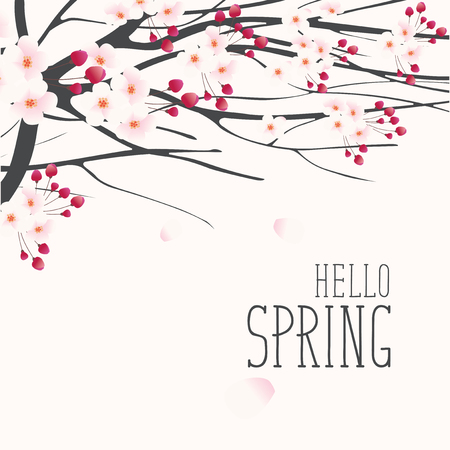 Vector greeting card with a spring landscape with pink buds and flowers on the branches of a blooming tree and inscription Hello Spring Illustration