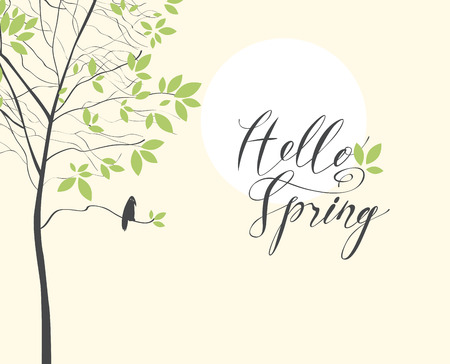 Vector spring banner or greeting card with handwritten inscription Hello Spring. Spring landscape with a lonely bird on the branches of a young green tree and the sun