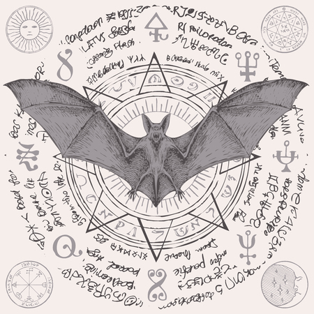 Vector illustration with a bat with open wings. Witchcraft magic, occult attributes, alchemy symbols. Illustration