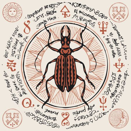 Illustration of a hand-drawn long-horned beetle on an old abstract illegible text written in a circle with magical inscriptions and symbols.