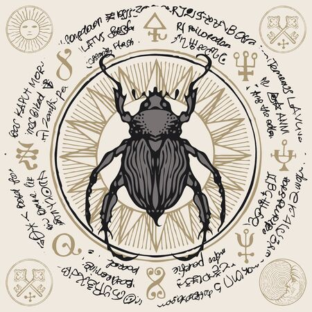 Illustration of a hand-drawn beetle on an old abstract illegible text written in a circle with magical inscriptions and symbols. Illustration