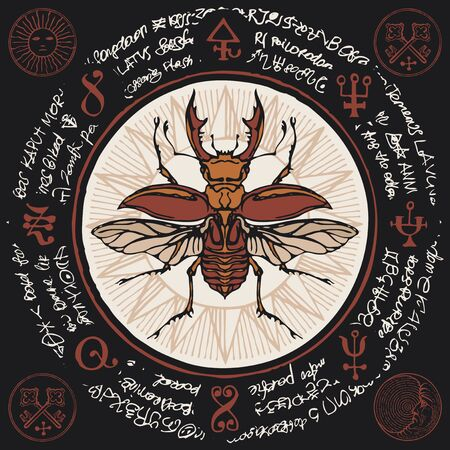 Illustration of a hand-drawn stag-beetle on an old abstract illegible text written in a circle with magical inscriptions and symbols.