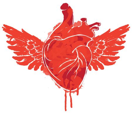 Graphic abstract  of human heart with wings isolated on white