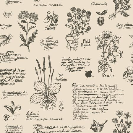 Vector seamless pattern on the theme of medicine and herbal treatment in retro style. Repeatable background with old hand-drawn sketches, unreadable notes, various herbs and blots.