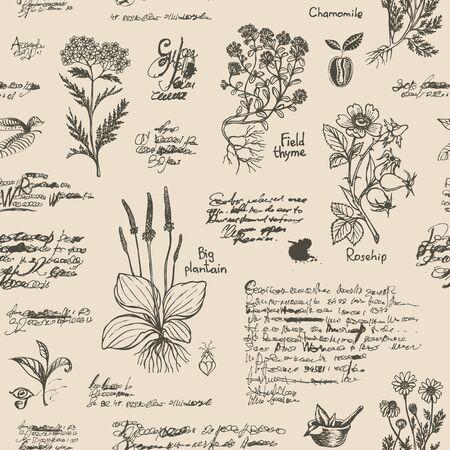Vektor nahtlose Muster zum Thema Medizin und Kräuterbehandlung im Retro-Stil. Wiederholbarer Hintergrund mit alten handgezeichneten Skizzen, unleserlichen Notizen, verschiedenen Kräutern und Flecken. Vektorgrafik