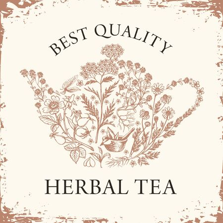 Vector banner for a Herbal tea with pencil drawings and inscription on the old paper background. Illustration with a teapot or kettle consisting of various hand-drawn herbs in retro style.