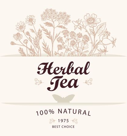 Vector banner or label for a herbal tea with hand-drawn herbs, calligraphic inscription and butterfly on a light background. Illustration