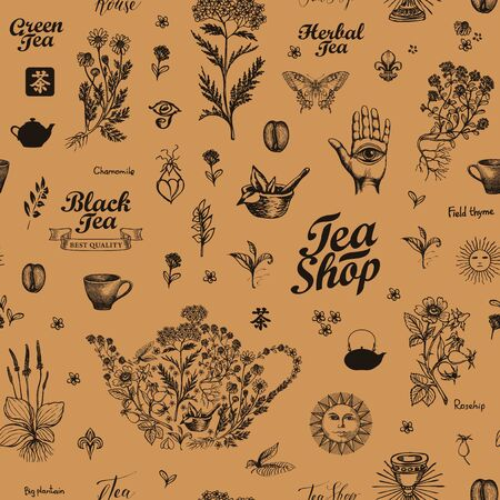 Vector seamless pattern with medicinal herbs and inscriptions. Hand-drawn background on tea theme in retro style. Suitable for wallpaper, wrapping paper, fabric. Chinese hieroglyph Tea