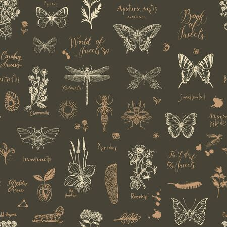 Vector seamless pattern with sketches of insects and medicinal herbs in retro style. Hand-drawn herbs, butterflies, beetles and inscriptions on the dark background. Wallpaper, wrapping paper, fabric