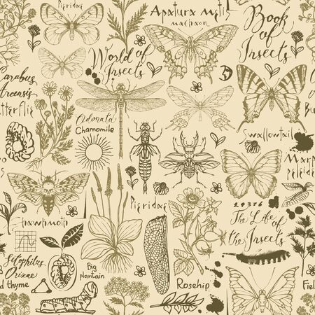 Vector seamless pattern with insects and medicinal herbs in retro style. Hand-drawn herbs, butterflies, beetles, sketches and inscriptions on an old paper background. Wallpaper, wrapping paper, fabric