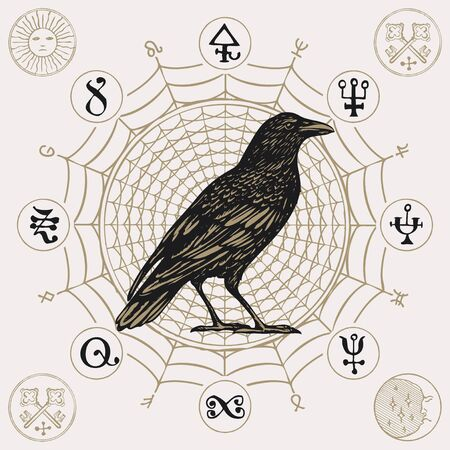 Banner on the theme of witchcraft with a wise black crow in vintage style. Vector illustration with a sorcery Raven on a background of decorative cobweb with scribbles imitating magic symbols