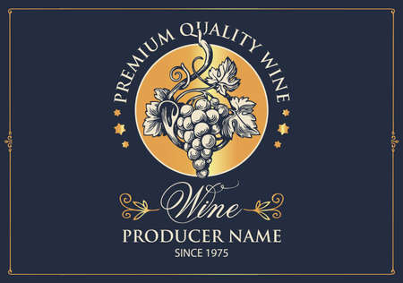 Wine label with a hand-drawn bunch of grapes and calligraphic inscription on the dark background. Vector label in retro style for premium quality grape wine  イラスト・ベクター素材