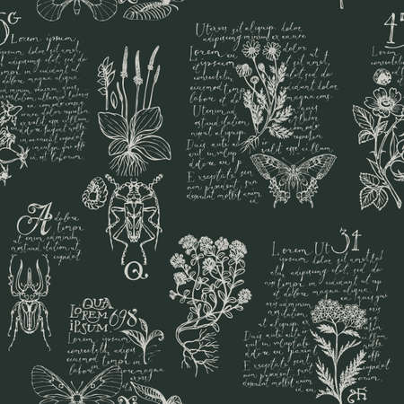 Seamless pattern with hand-drawn medicinal herbs, beetles, butterflies and handwritten text Lorem Ipsum. Vector repeatable background in retro style. Wallpaper, wrapping paper, textile Vecteurs