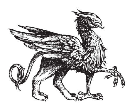 Heraldic griffin from the family crest. Vintage mythical animal with body of a lion, bird wings and an eagle head. Gryphon heraldry symbol, hand-drawn illustration. Black and white vector sketch