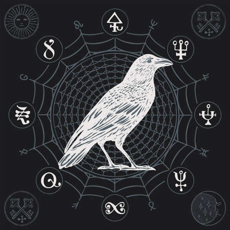 Banner on the theme of witchcraft with a wise white crow in vintage style. Vector illustration with a sorcery Raven on a background of a cobweb with mysterious symbols, occult signs or magic runes