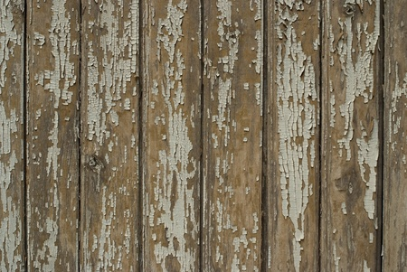 Texture of old wooden boards background photo