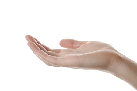 closeup woman s hand isolated on white background Stock Photo - 12670567