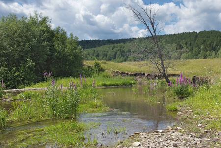 morning on the river in the foothills of the Urals Stock Photo