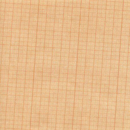 Aged old grunge grid scale paper, high resolution background. Stock Photo - 7141479